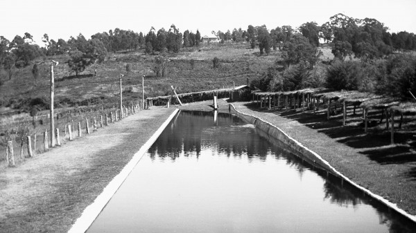 1939 07 Honeymoon - Goulden Pool, Stirling